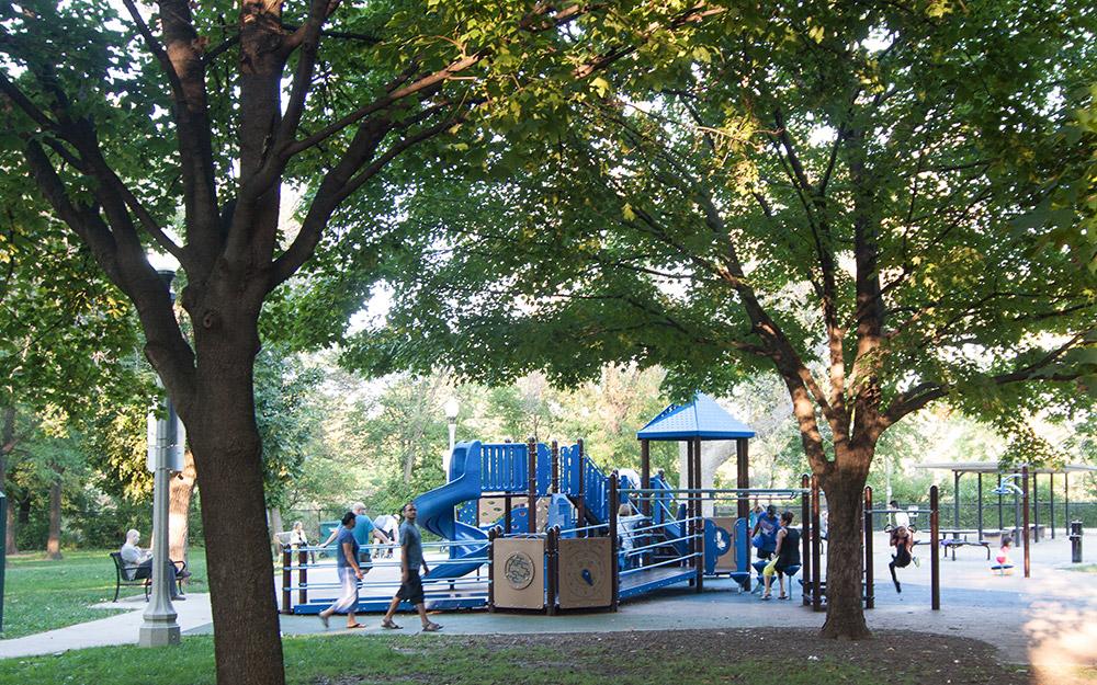 Albany Park Neighborhood Photo