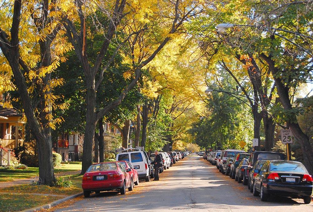 Andersonville Neighborhood Photo