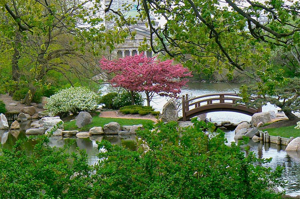 Hyde Park Neighborhood Photo