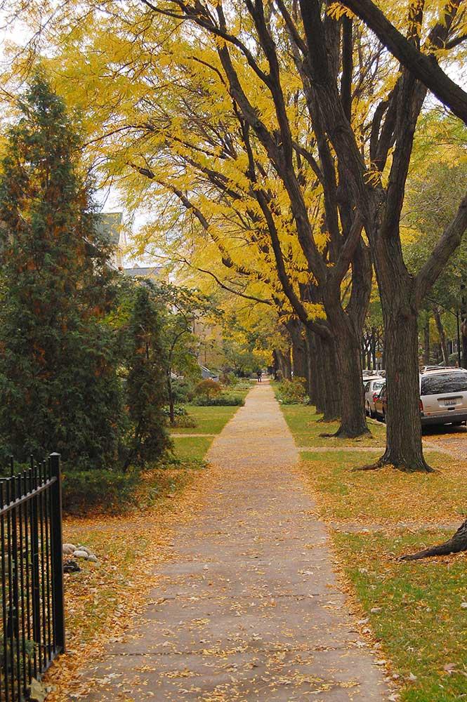 Lakewood Balmoral Neighborhood Photo