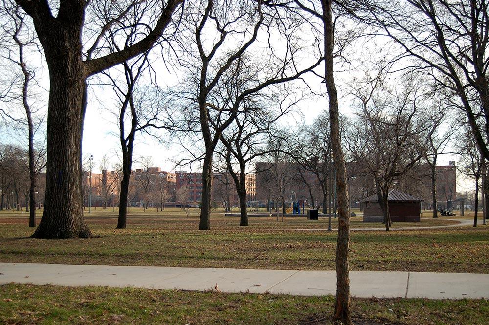 McKinley Park Neighborhood Photo